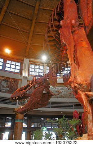 Osaka, Japan - Apr 11 2017: T-Rex (Tyrannosaurus Rex) Skeleton at the Universal Studios JAPAN