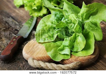 Raw green organic butter lettuce ready to chop on cutting board with knife .