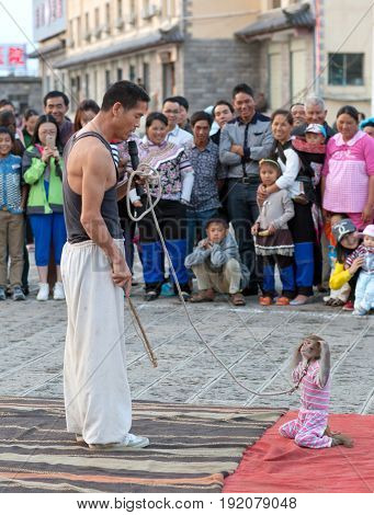YUANYANG, CHINA - MAY 4, 2014: Street acrobat training monkey during street show
