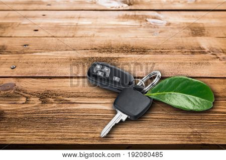 Green key leaf house key real estate new home house keys