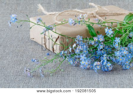Forget me not lay on gray background