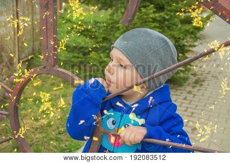 a little boy stands at the fence looks into the distance. smile of a child