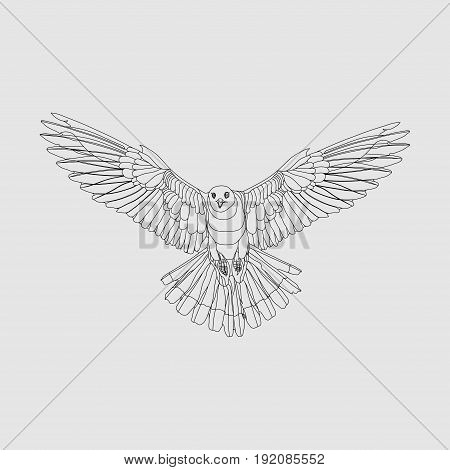 realistic eagle soaring eagle catching prey a symbol of freedom image