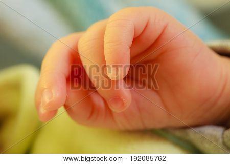 Little Newborn Baby Hand Closeup