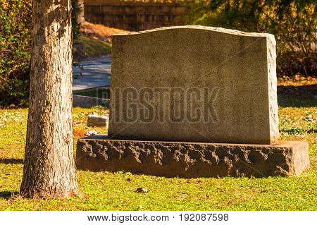 Atlanta, Georgia, USA - December 22, 2016: The tombstone and trunk of the pine tree closeup on the Oakland Cemetery in sunny autumn day