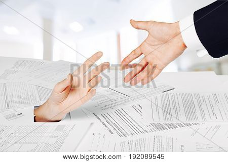 Business stack woman papers human female adult