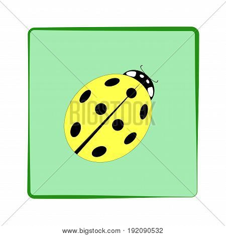Ladybird isolated. Illustration ladybug in green frame. Cute colorful sign yellow insect symbol spring summer garden. Template for t shirt apparel card poster. Design element Vector illustration
