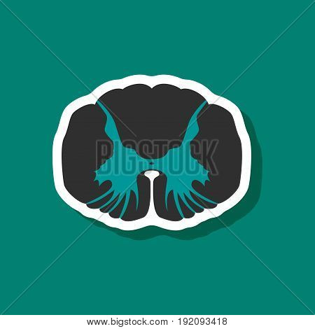 paper sticker on stylish background spinal cord