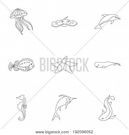 Marine and river inhabitants. Fish, whales, octopuses.Sea animals icon in set collection on outline style vector symbol stock web illustration.