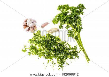 Finely chopped parsley and garlic Isolated on White Background. Studio Photo