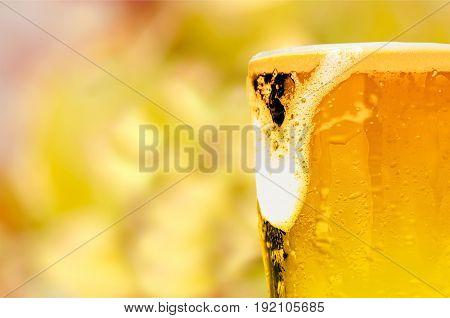 Mug foam beer bar background view close-up