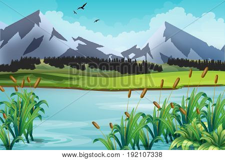 Mountain landscape. Natural background with lake meadow mountain peaks. Vector illustration the summer wild nature