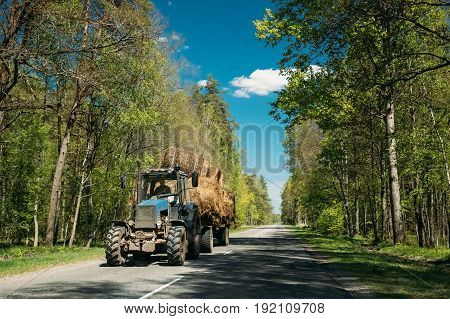 Tractor Is Carrying Hay On Cart. Tractor In Motion On Country Road Through Forest In Europe.  Asphalt Road Against Background Of Eastern European Landscape. Agricultural Concept