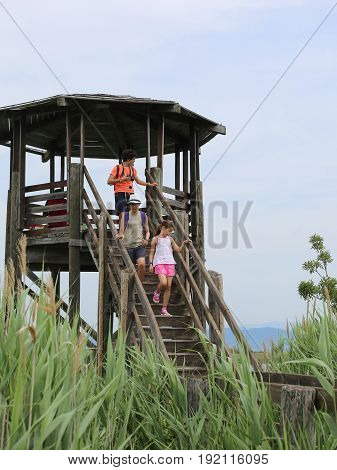 Three children descend from the observatory tower of a natural reserve