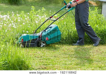 Gardener Male Mow Grass With Lawn Mower In His Sunny Summer Garden.