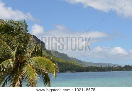Coastline along the northwest of O'ahu, Hawai'i