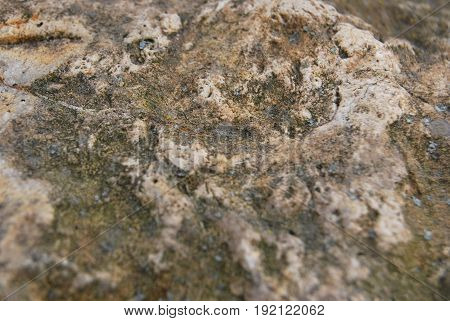 The texture of wild stone is gray
