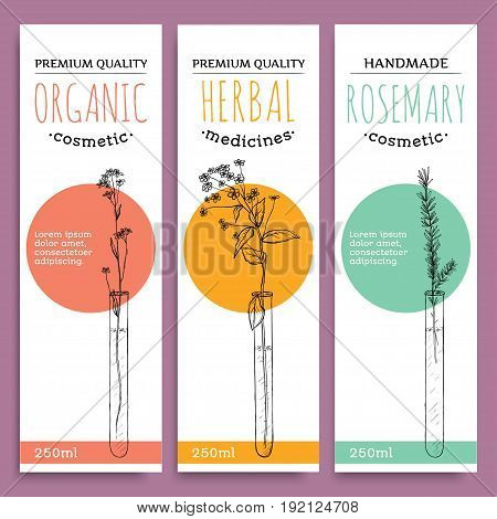 Sketch herbal vertical banners with organic herbs rosemary valuable for human health and bodycare vector illustration