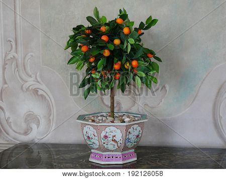 An orange tree in beautiful painted plant pot in baroque