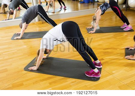 Male and female friends performing downward facing dog position on mats in gym