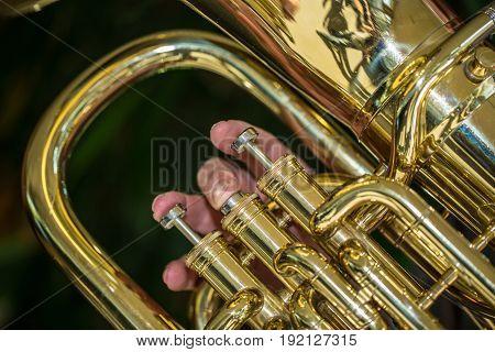 Close Up Of Horn Valves