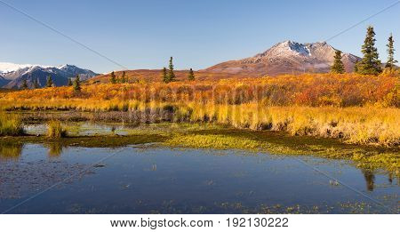 Volcanic landscape in Alaska winter approaching fall color