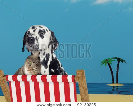 Cute dog and cat relaxing on a red deck chair on the sand beach