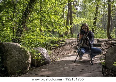 Concentrated woman photographer takes pictures of summer forest and ecological paths in the sunlight on a camera that stands on a tripod.