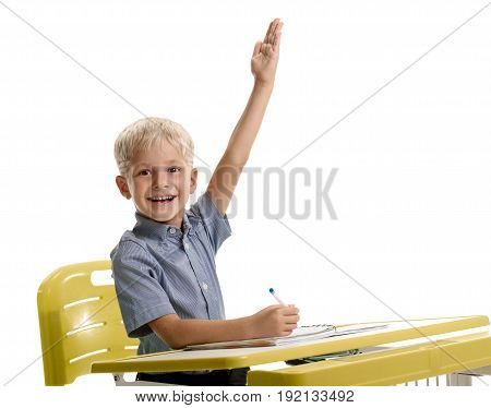 Cheerful smiling boy sitting at the desk and ready to answer on lesson