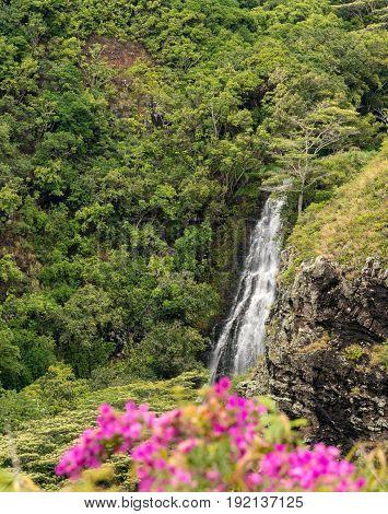 Sun illuminates the twin falls of Opaekaa waterfall on Hawaiian island of Kauai