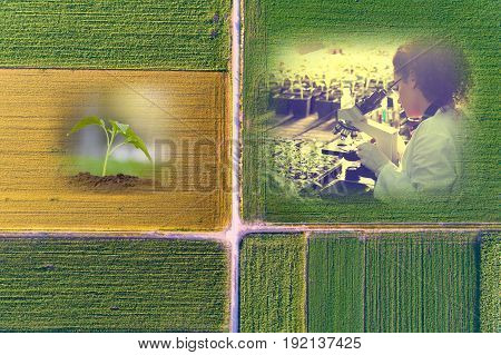 Conceptual collage of agriculture and plant protection. Top view of farmlands with implemented biotechnological images with fade effects