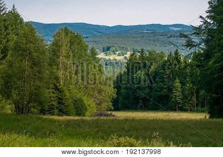 Landscape View, Mountain And Beautiful Nature From Neuschwanstein Castle In Bavaria, Germany