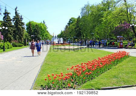 Chernihiv / Ukraine. 06 May 2017: People have a rest in the city park with wide footpath beds of tulips and fountains. 06 May 2017 in Chernihiv / Ukraine.
