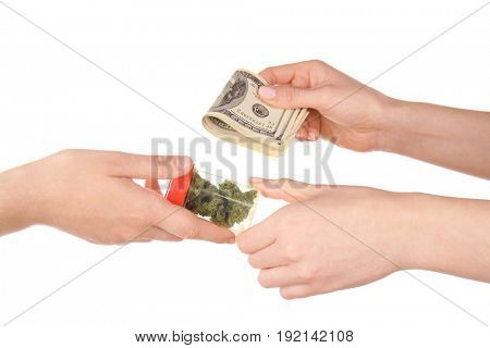 Woman buying weed in container isolated on white