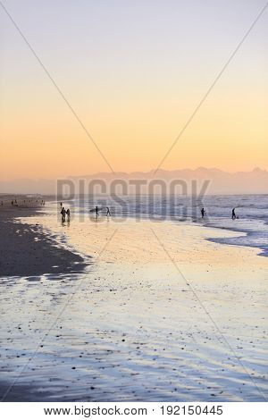 soft pink glow at sunset along the ocean, low tide wet sand waves silhouette of surfers
