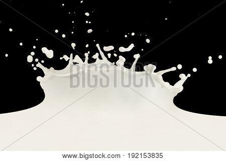 splashing milk isolated on black background