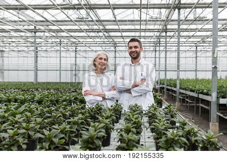 Picture of happy bearded man standing in greenhouse with mature woman with arms crossed. Looking at camera.