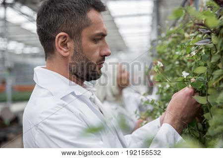 Picture of handsome young man and mature woman standing in greenhouse near plants. Looking aside.