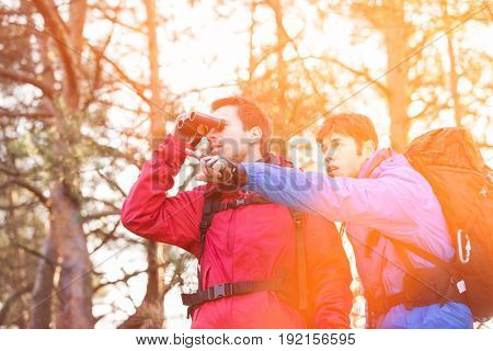 Hiker using binoculars while friend showing him something in forest