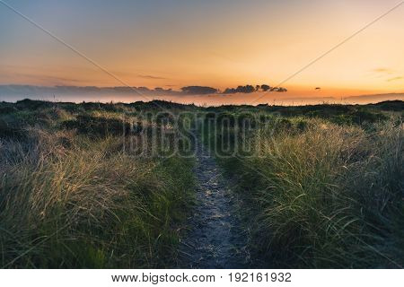 Image of a trail to the beach at sunset.