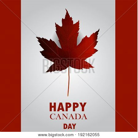 Canada flag with real maple leaf national day of Canada vector background