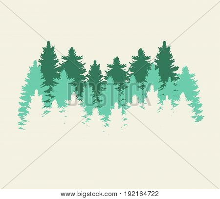Forest trees at Thetford UK on white background