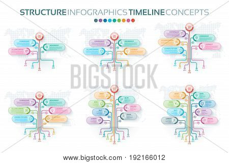 Set of tree infographics templates with branches options and root. Tree timeline process. Vector illustration
