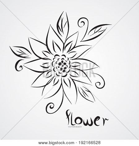 Sunflower outline drawing vector illustration, nature, art