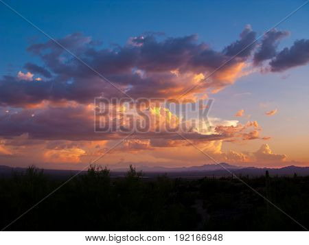Clouds and Sunset or Sunrise with Silhouette Cactus in the Sonoran Desert