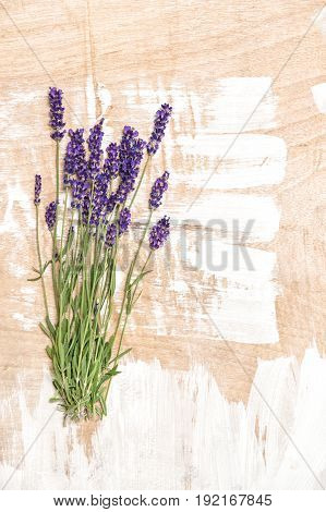 Lavender flowers on wooden background. Bunch of fresh blossoms
