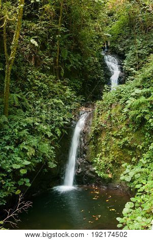 Small waterfall in monteverde cloud forest reserve Costa Rica
