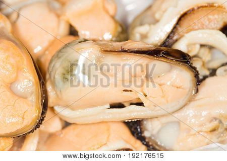 Close-up of big group steamed fresh mussels.