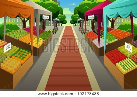 A vector illustration of Farmers Market Background