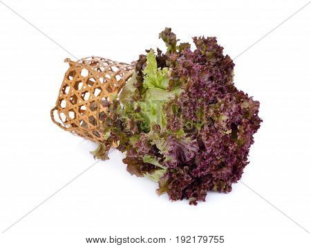 fresh red coral lettuce with bamboo basket on white background